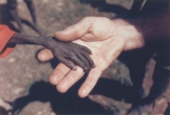 A starving boy and a missionary in Uganda. (Mike Wells)